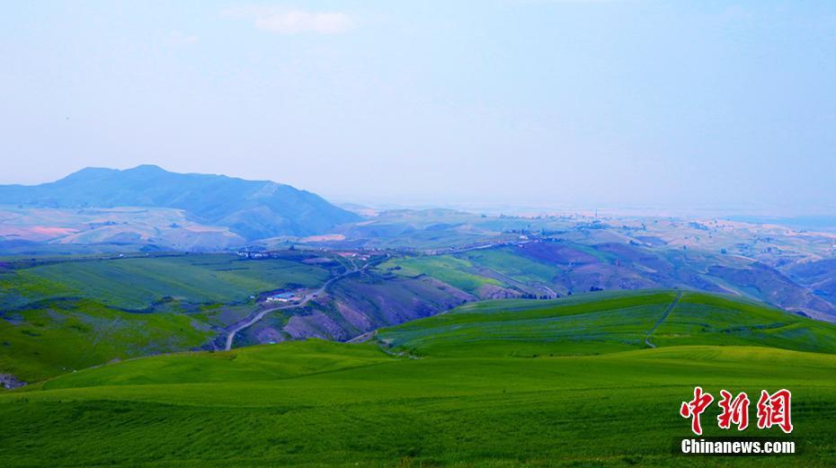 江布拉克景区位于奇台县半截沟镇,万亩旱麦田是重要景点之一.