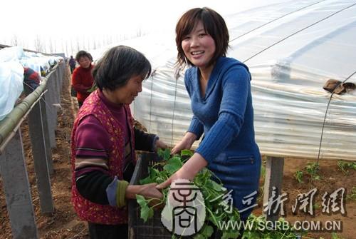 河南省商丘市民权县积极高中主任年级述职报告图片