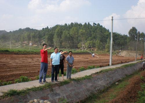 白鹤林村土地纠纷问题上访为零,完成坡改梯工程100亩,成片连土整田600